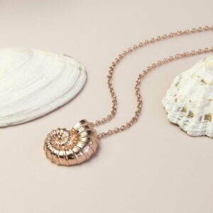 rose gold nautilus shell necklace