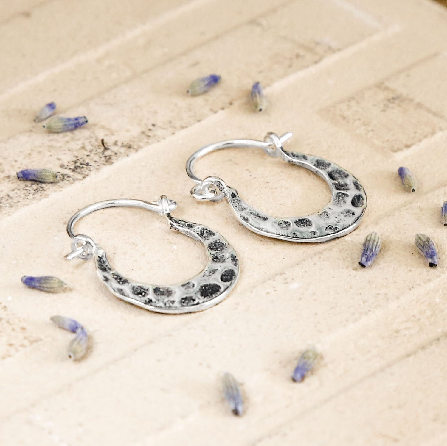 Silver Hammered Hoop with a Horse Shoe Shape and Oxidised Detail, on a terracotta background with Dried Lavender petals