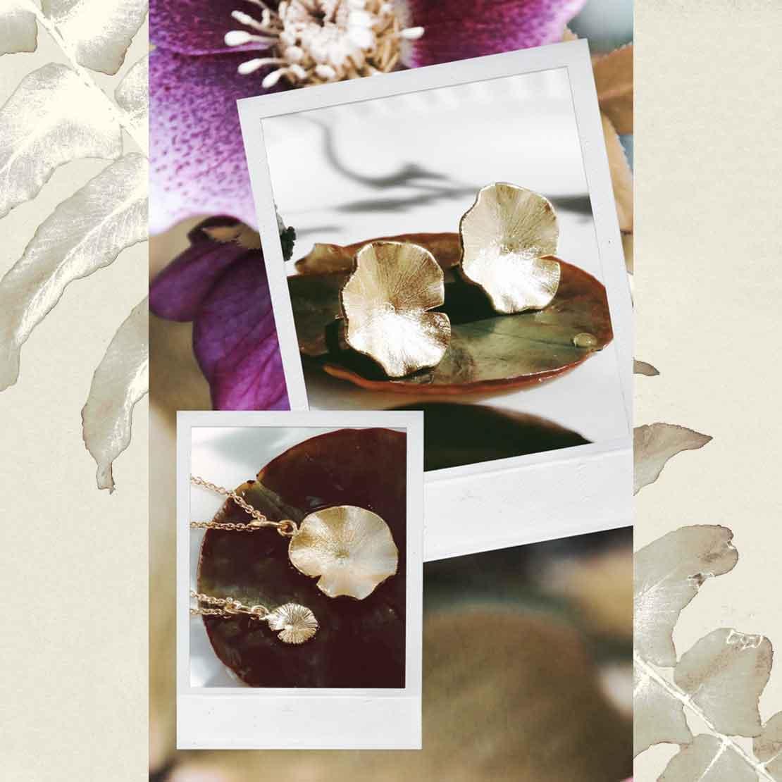 botanic-image-1-1110x1110